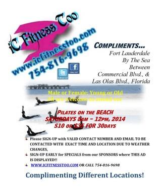 FlyBeach2014